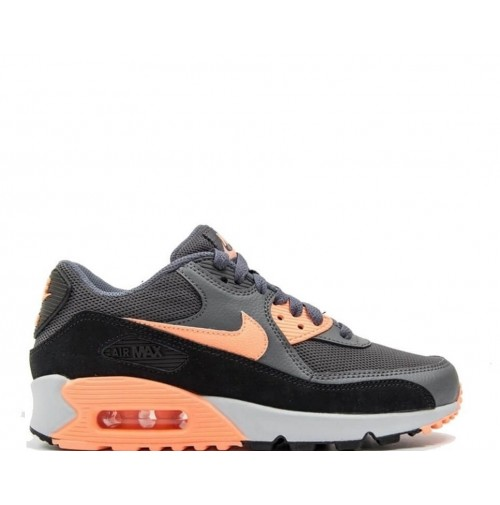 Кроссовки Nike Air Max 90 Essential Grey/Glow/Platinum